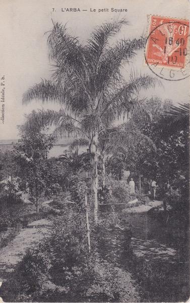 Arba petit square 2