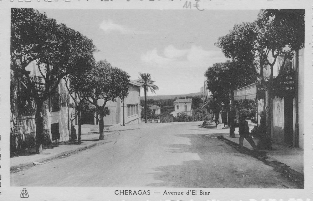 Avenue el biar