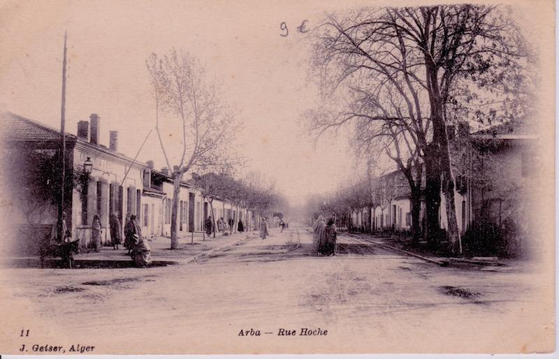 Rue hoche arba